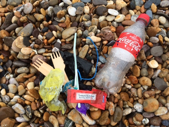 2 Minute Beach Clean at Torcross