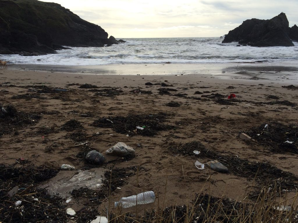 soar mill cove ocean plastic pollution
