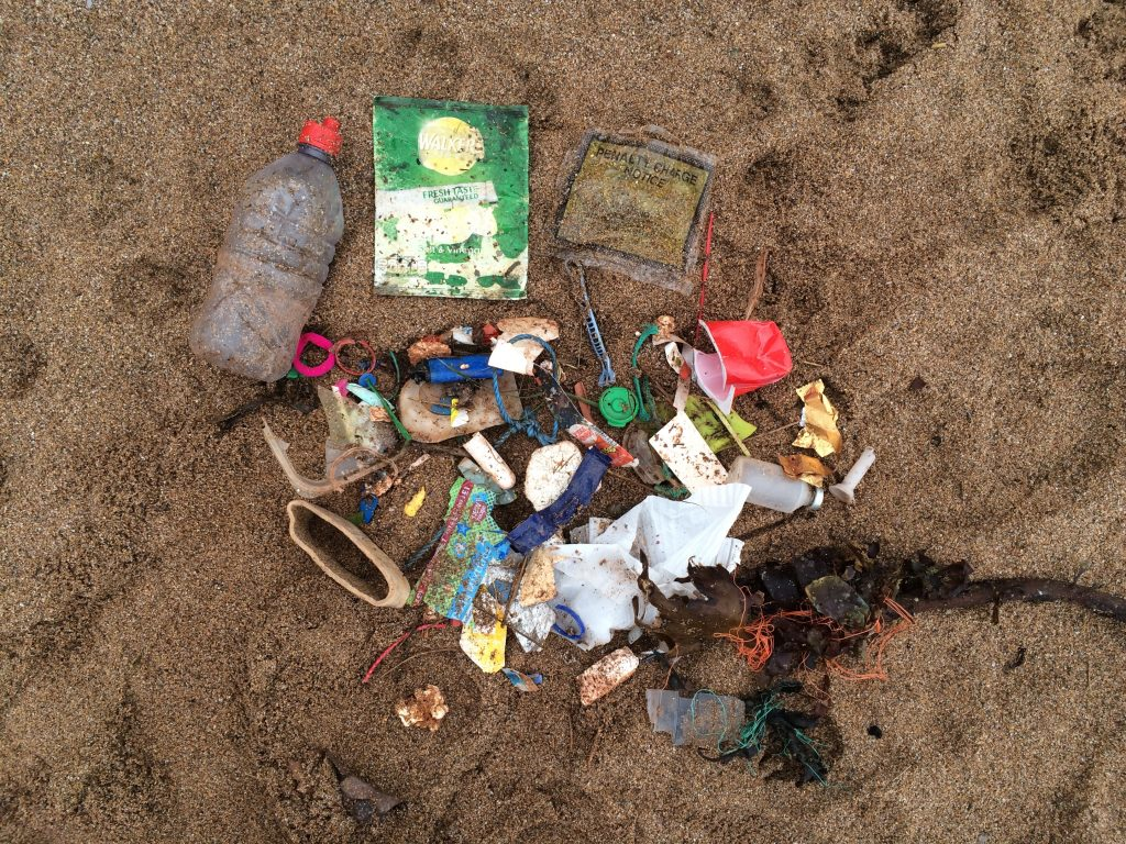 mini beach clean at south milton sands