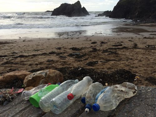 plastic bottles at soar mill cove