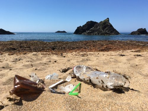 plastic on the beach at soar mill cove
