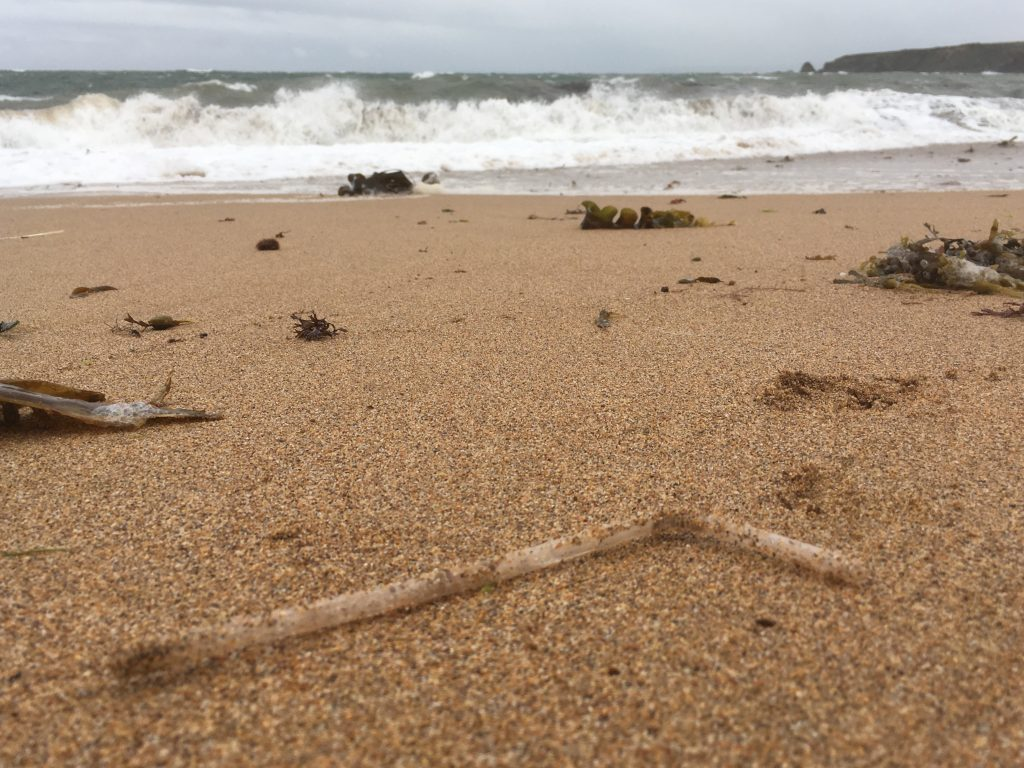 plastic straw on a beach