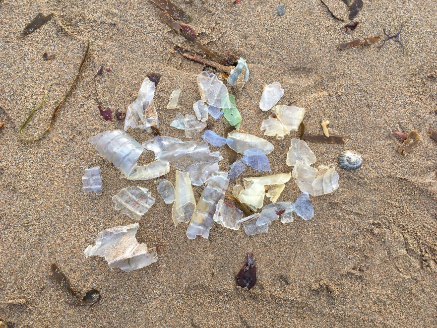 single-use plastic water bottle fragments on beach